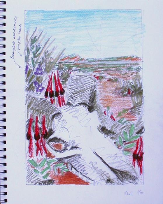 Desert skull second composition