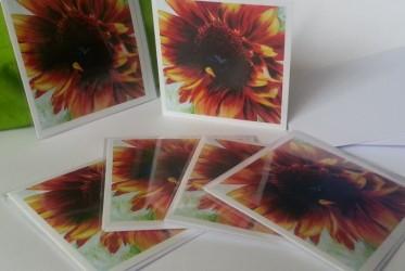 Sunflower I cards