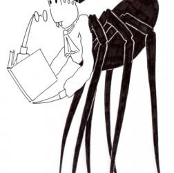 Spider Teacher